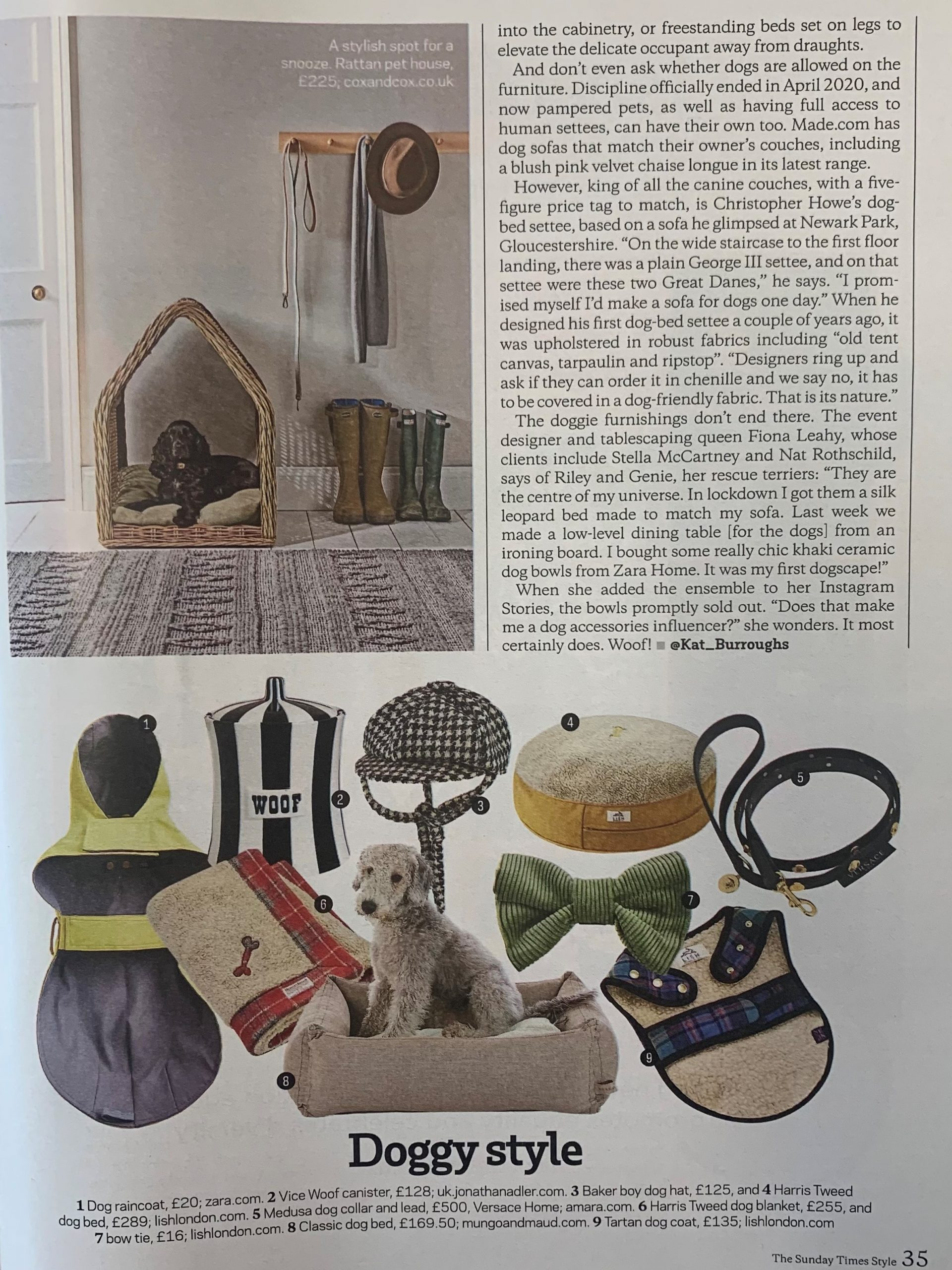 Sunday Times Style are striving for peak pooch with Jonathan Adler's iconic Woof vice canister